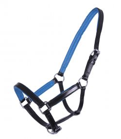 Head collar foal leather Spirit Black/blue 04