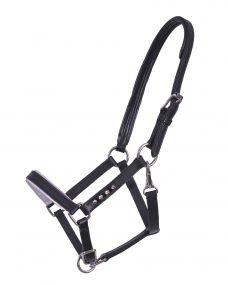 Head collar foal leather Parla Black 04