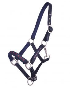 Head collar foal Q Friesian Navy 04