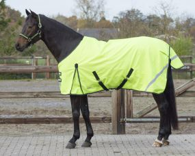 Turnout rug reflection 0gr Yellow 215