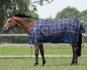 Turnout rug collection no fill Nautical 125