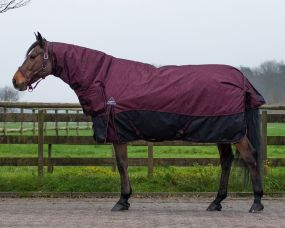 Turnout rug collection with neck 300gr Florals 215