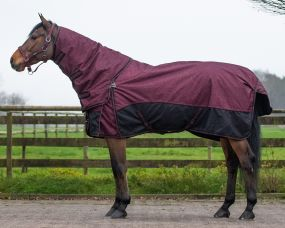 Turnout rug collection 150gr with detachable nec Florals 215