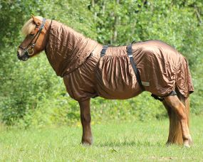 Eczema rug Icelandic Brown 185