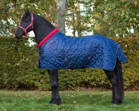 Stable rug Q Friesian 250gr Navy 205