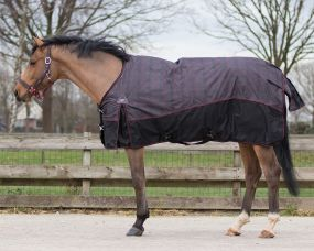 Turnout rug Collection 150gr Wildlife 215
