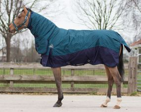 Turnout rug Collection with neck 300gr Illusion 175
