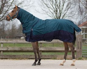 Turnout rug Collection 300gr detachable neck Illusion 165