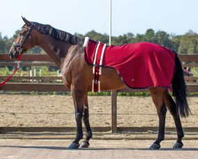 Lunging rug Florence Burgundy XL