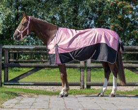 Turnout rug collection no fill Blossom 215
