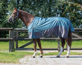 Turnout rug collection no fill Zigzag 215