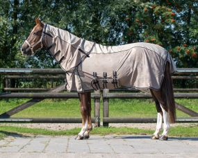 Anti-fly rug combo collection with neck Brushstroke 215