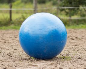 Horse football Blue 100cm