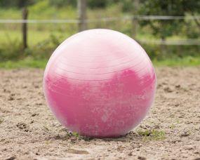 Horse football Pink 100cm