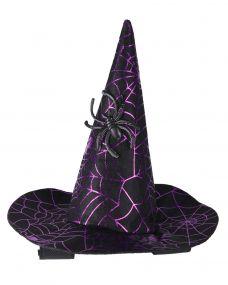 Witch hat Halloween horse Spider