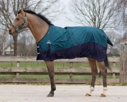 Turnout rug Collection fleece lining